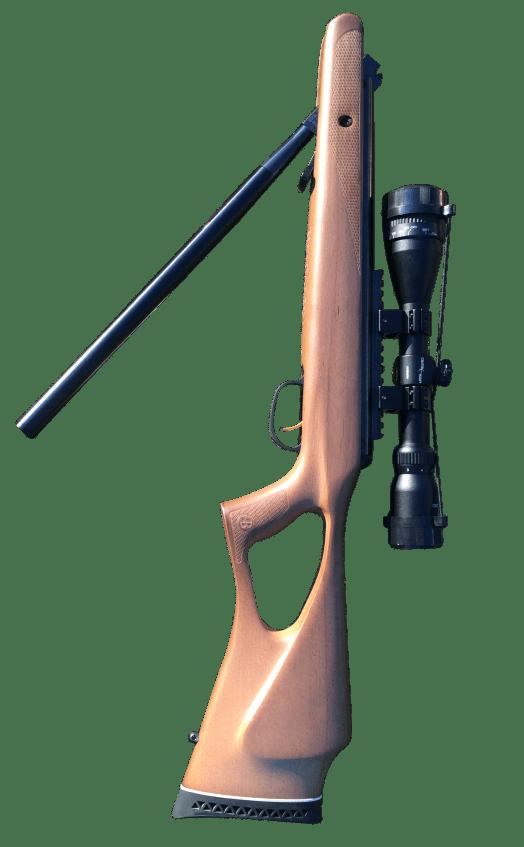 Benjamin Trail NP vs  Hatsan Model 95 Air Rifle - Air Rifle