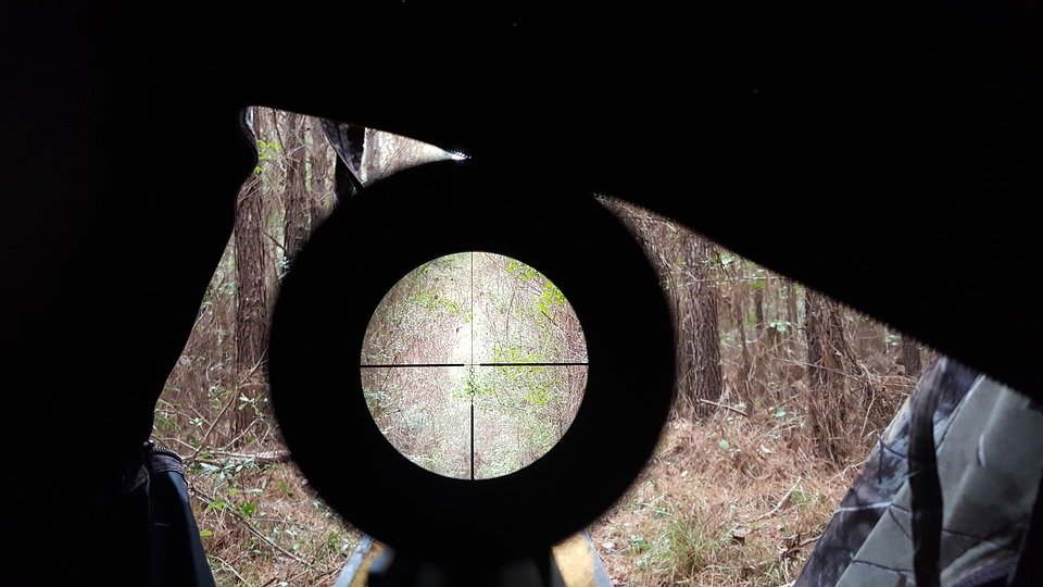 Small Game Hunt Scopes