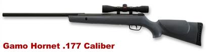 Gamo Swarm Maxxim Air Rifle