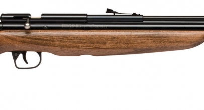 Review of Benjamin Discovery PCP Air Rifle - Air Rifle Hunter
